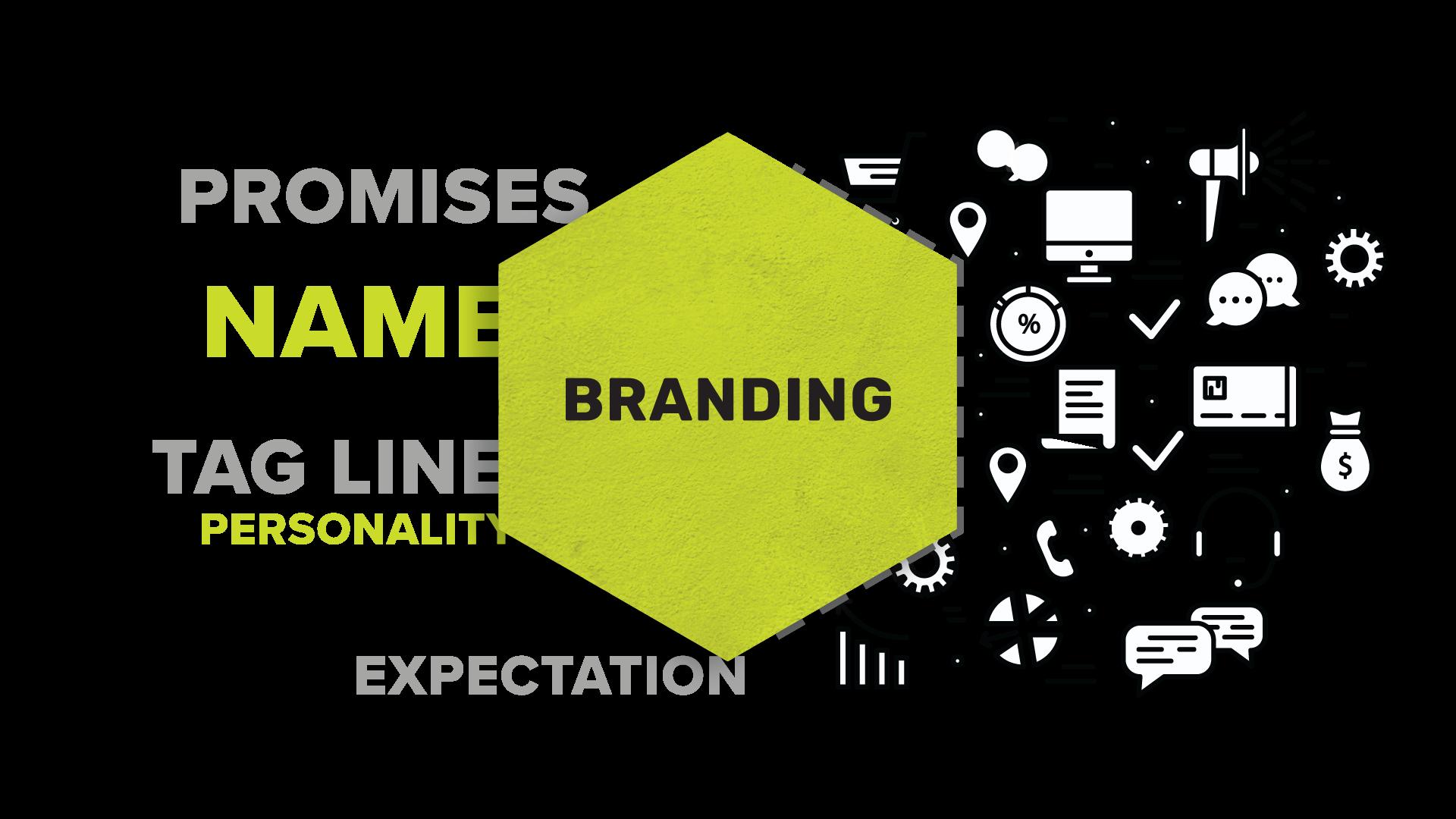 Trifactor Creative - Branding Elements