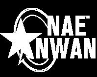 Trifactor Creative - Insurance Case Study NAENWAN